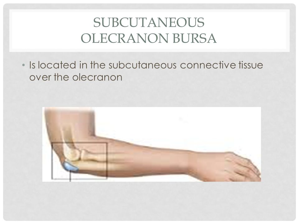 Elbow Humeroulnar Joint - ppt video online download