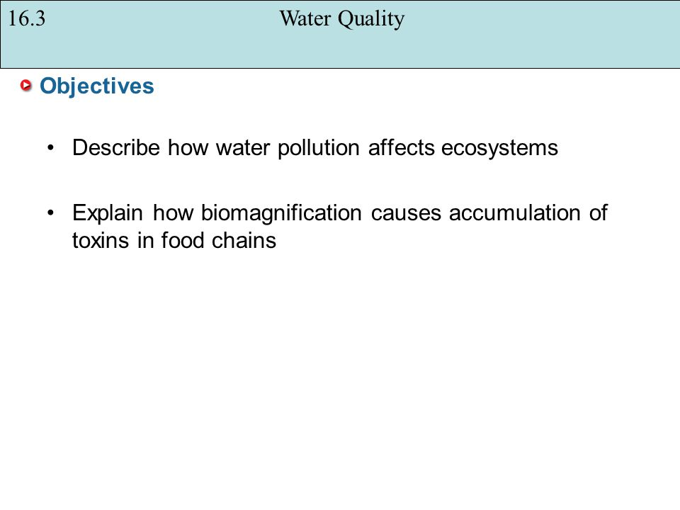 16.3 Water Quality Objectives. Describe how water pollution affects ecosystems.