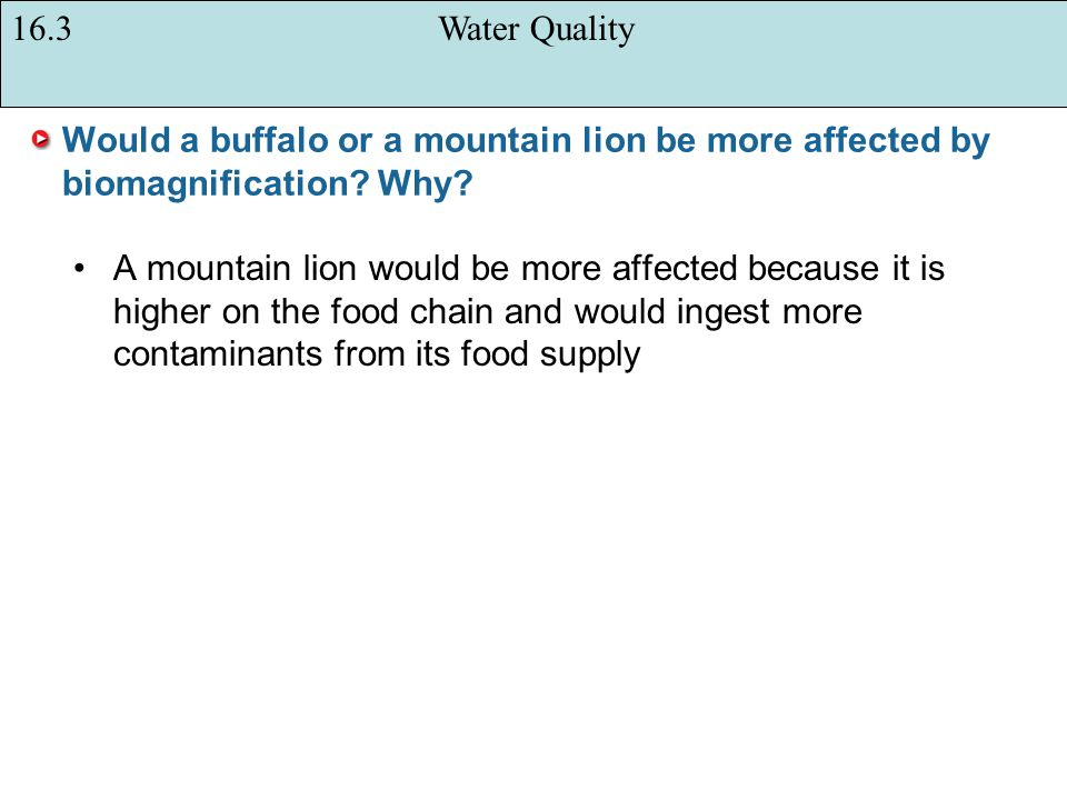 16.3 Water Quality Would a buffalo or a mountain lion be more affected by biomagnification Why
