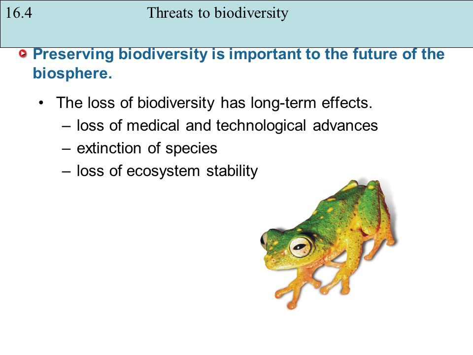 Preserving biodiversity is important to the future of the biosphere.