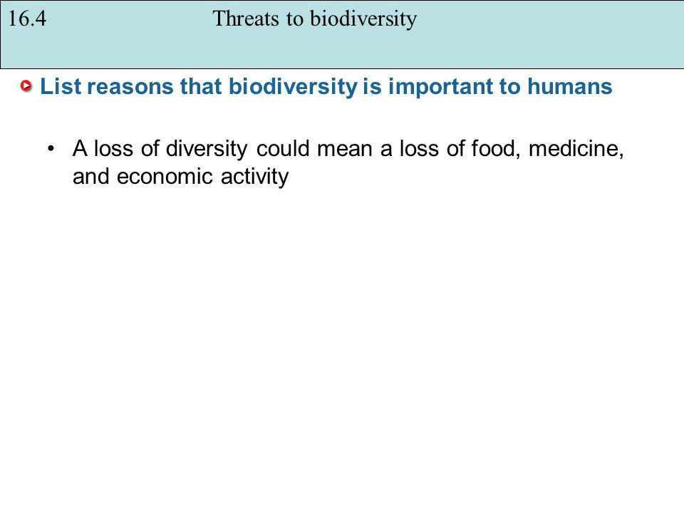 List reasons that biodiversity is important to humans