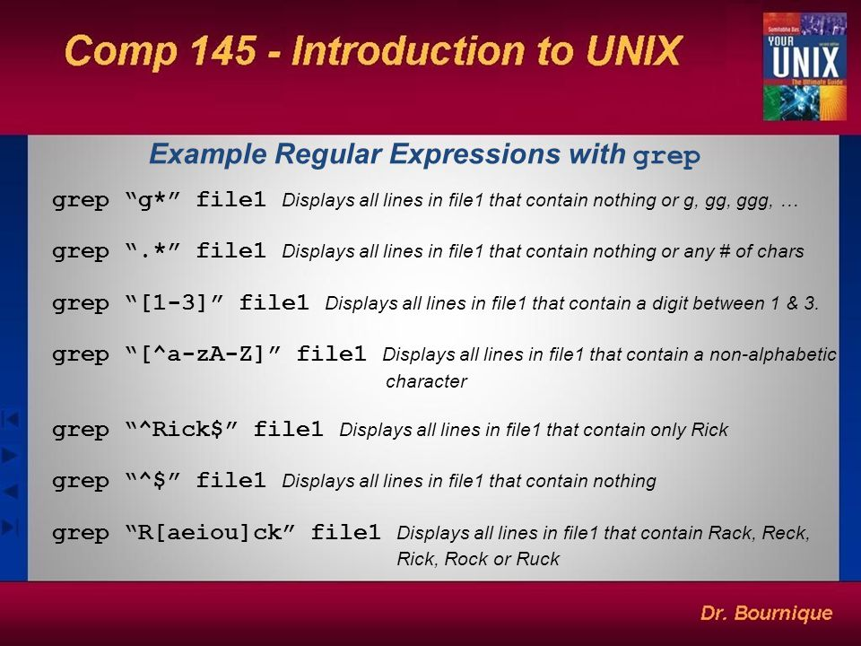 Example Regular Expressions with grep
