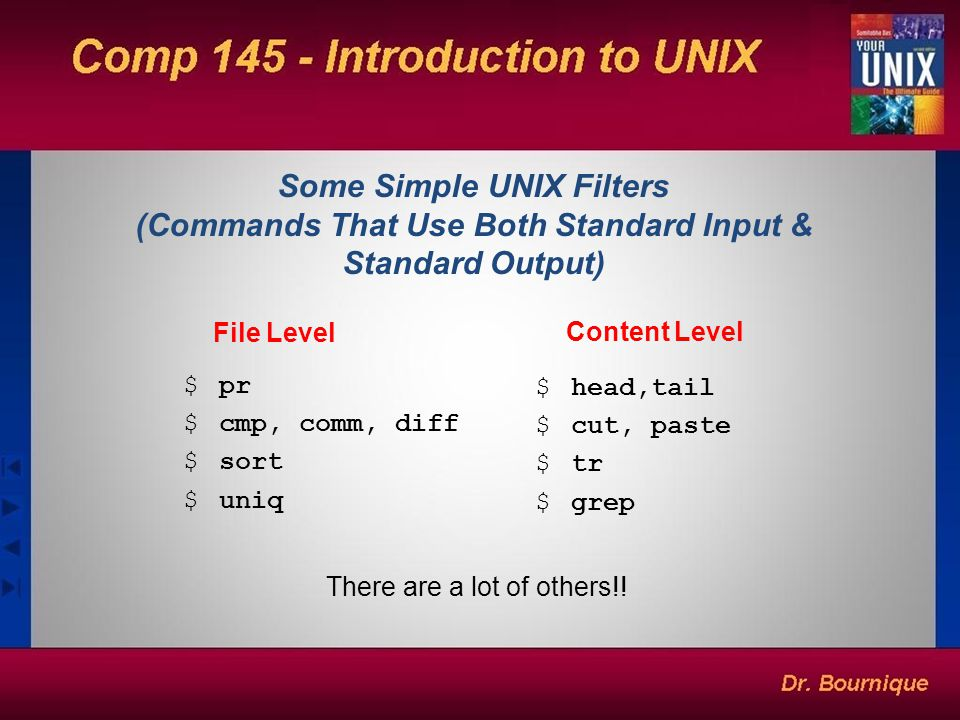 Some Simple UNIX Filters (Commands That Use Both Standard Input & Standard Output)