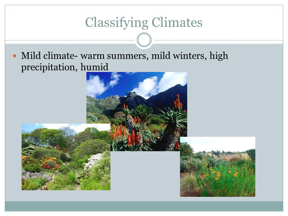 Classifying Climates Mild climate- warm summers, mild winters, high precipitation, humid