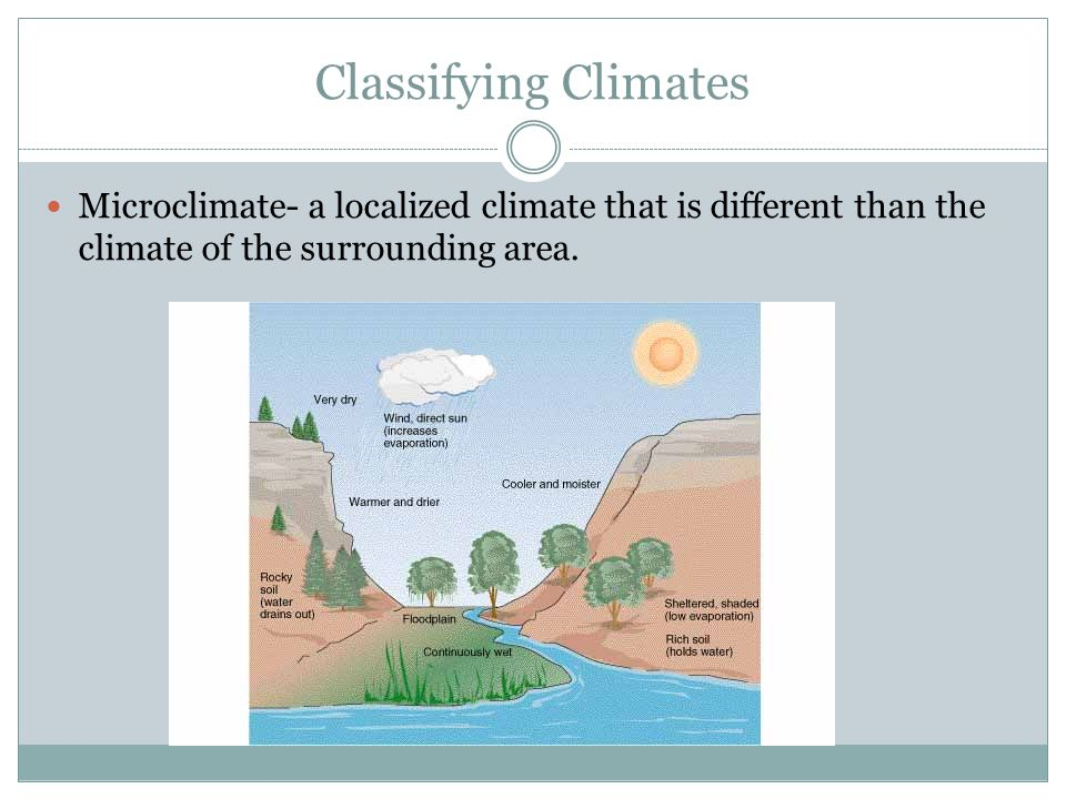 Classifying Climates Microclimate- a localized climate that is different than the climate of the surrounding area.