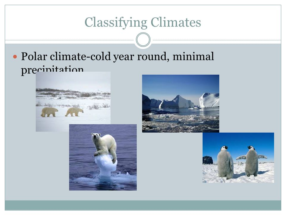 Classifying Climates Polar climate-cold year round, minimal precipitation