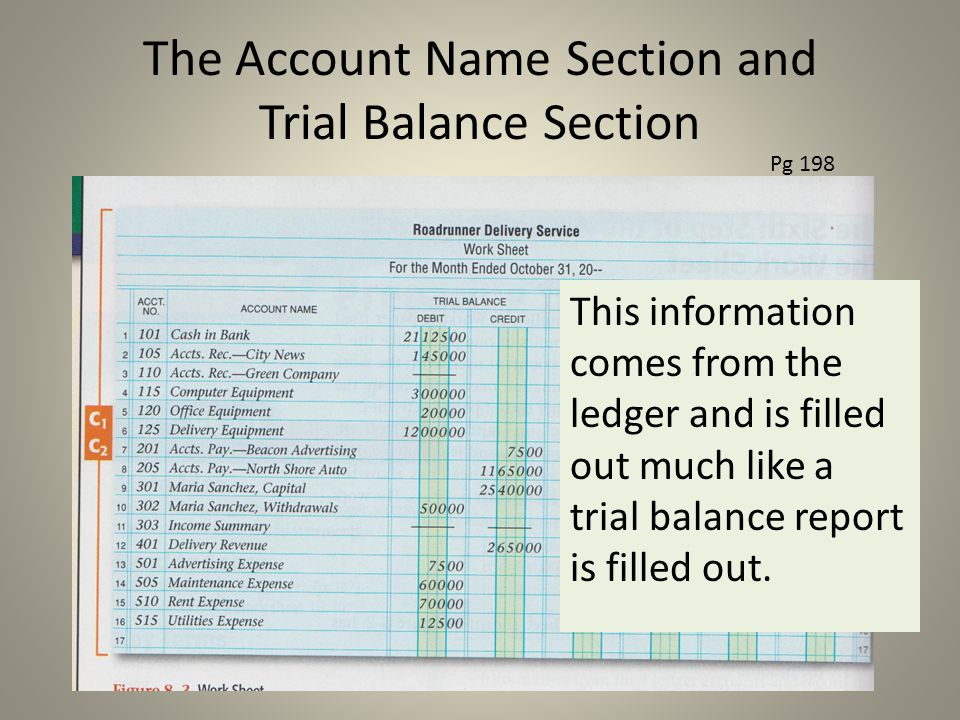 The Account Name Section and Trial Balance Section