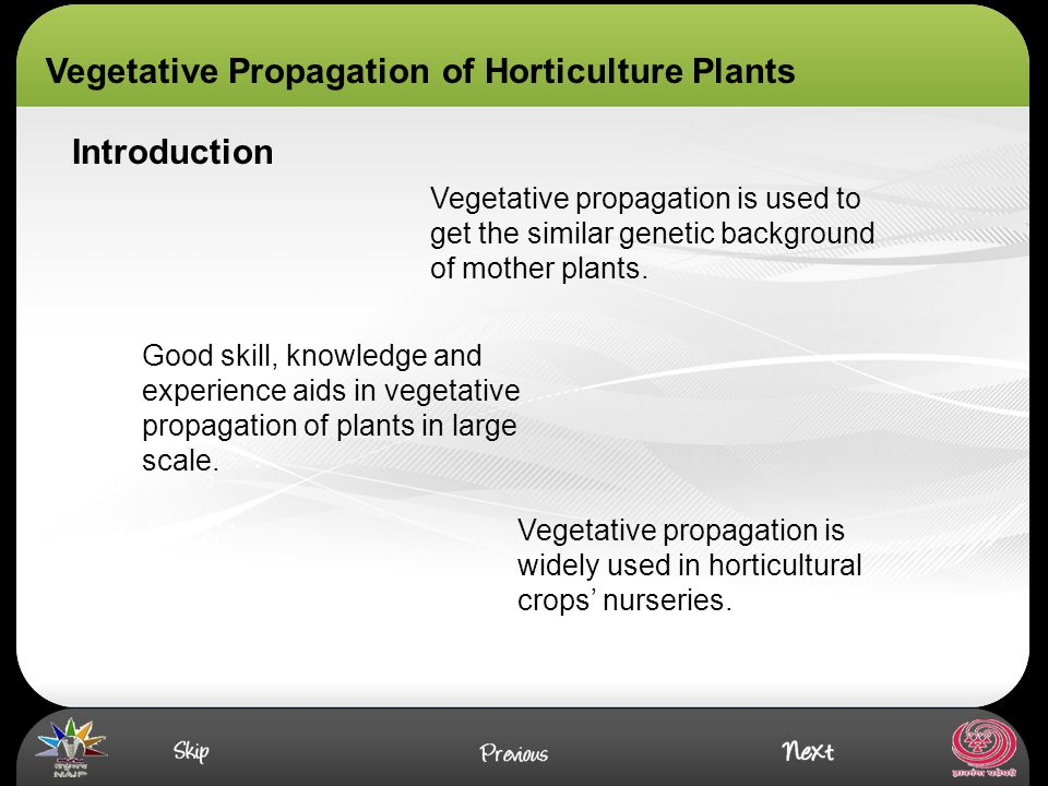 Asexual propagation advantages of computer