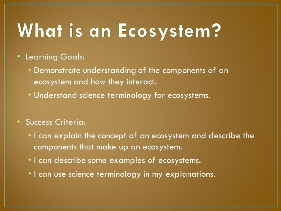 What are some examples of ecosystems? | socratic.