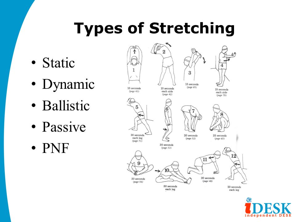 Types of Stretching Static Dynamic Ballistic Passive PNF