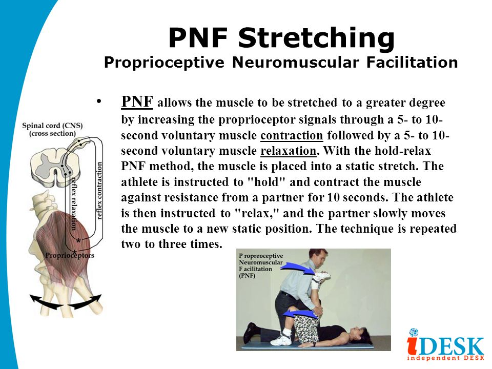 PNF Stretching Proprioceptive Neuromuscular Facilitation