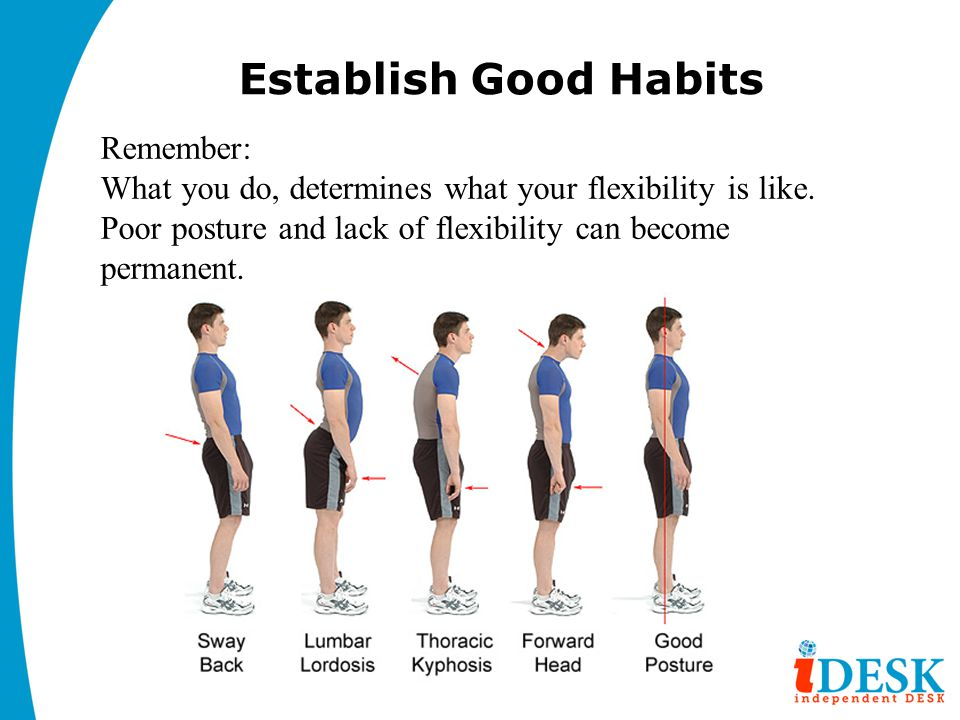 Establish Good Habits Remember: What you do, determines what your flexibility is like.