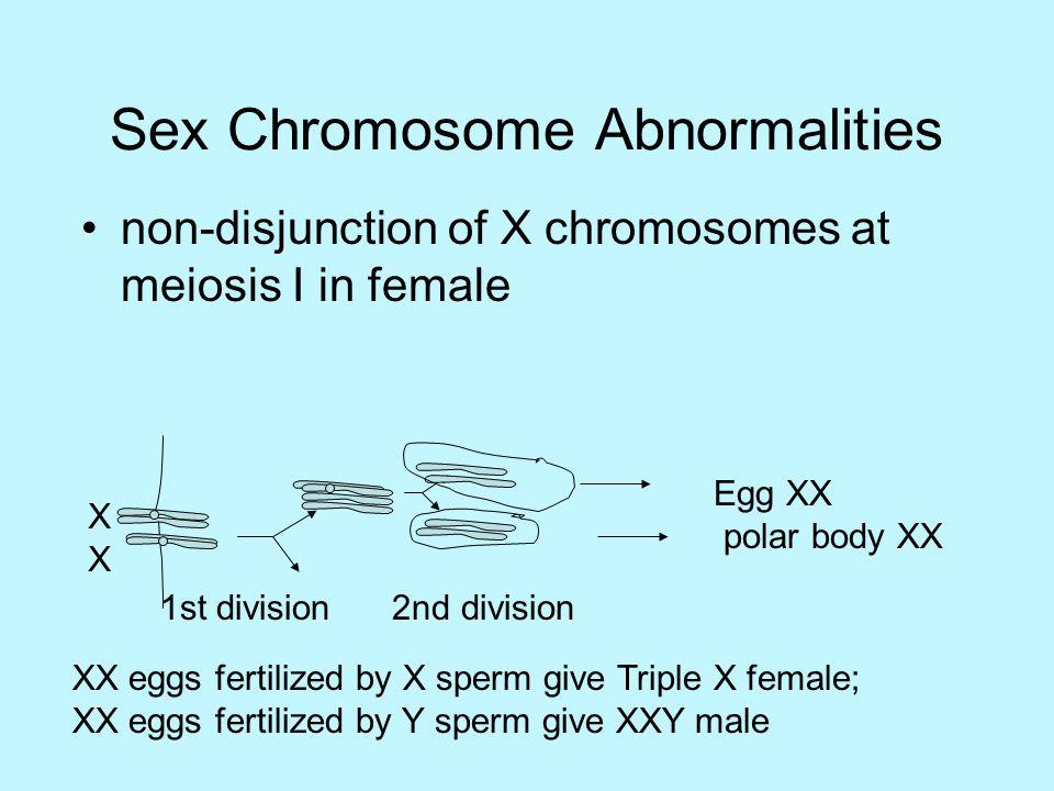 Sex chromatin and phenotype in man