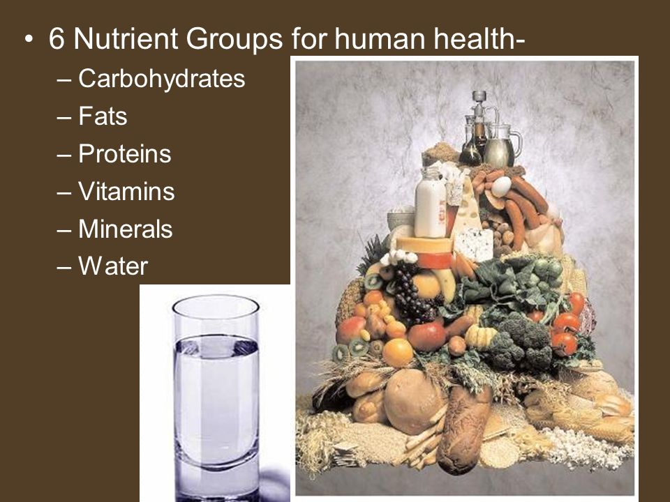 6 Nutrient Groups for human health-