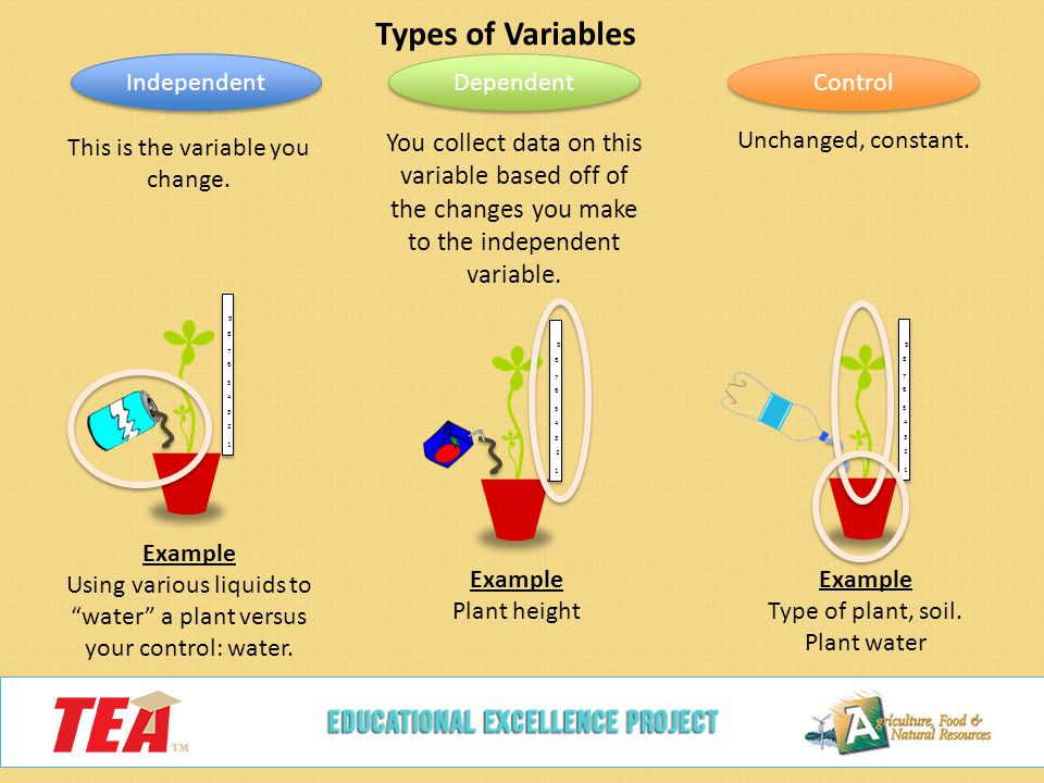 Independent Dependent And Controlled Variable Examples