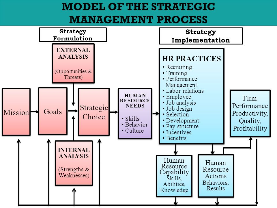 chapter no 8 strategic human resource management human resourcemodel of the strategic management process