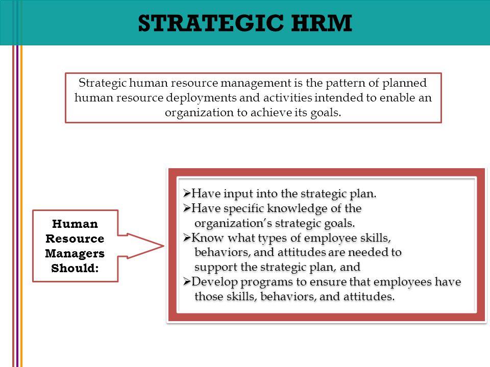 chapter no 8 strategic human resource management human resourcehuman resource managers should