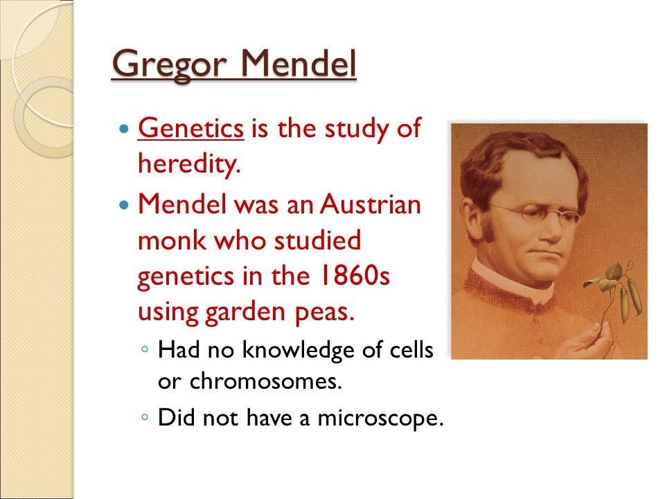 Gregor Mendel Genetics is the study of heredity.