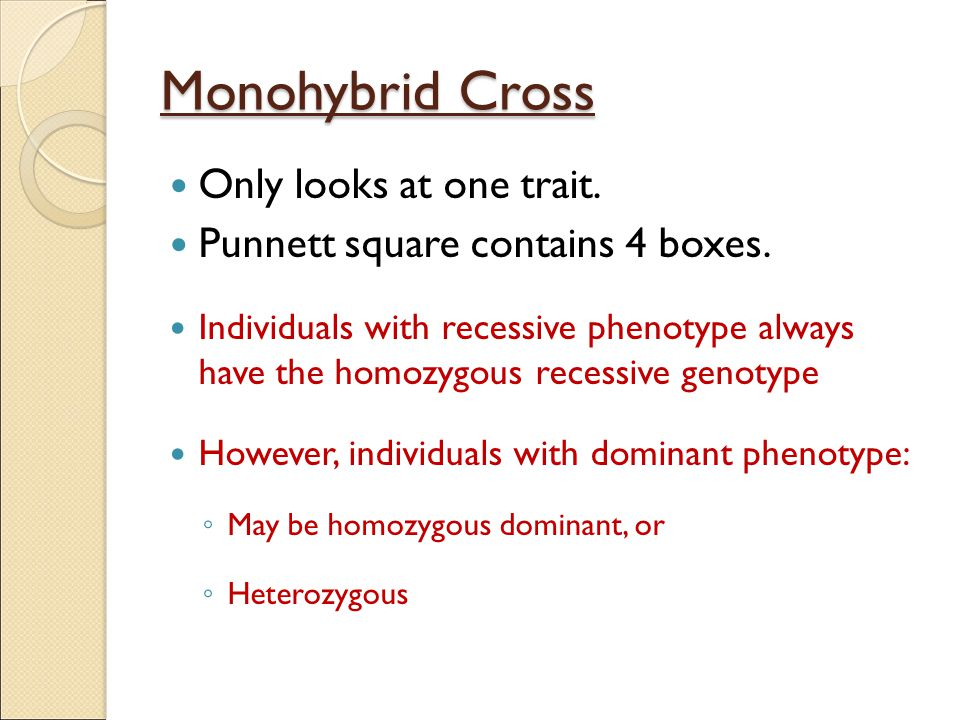 Monohybrid Cross Only looks at one trait.