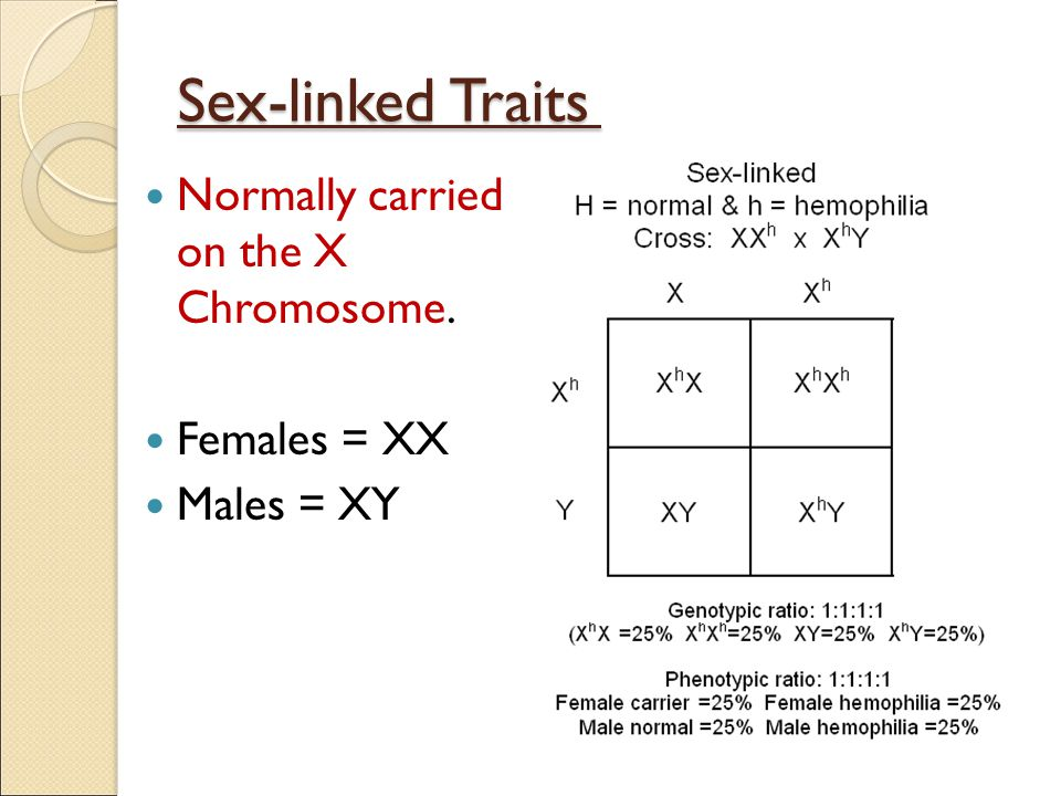 Sex-linked Traits Normally carried on the X Chromosome. Females = XX
