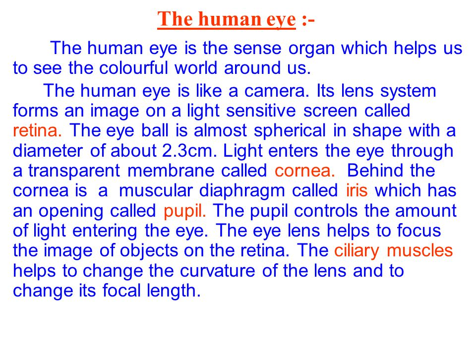 The human eye :- The human eye is the sense organ which helps us to see the colourful world around us.