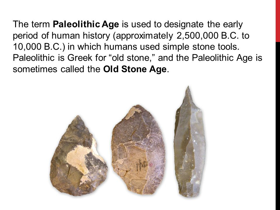 the paleolithic age is