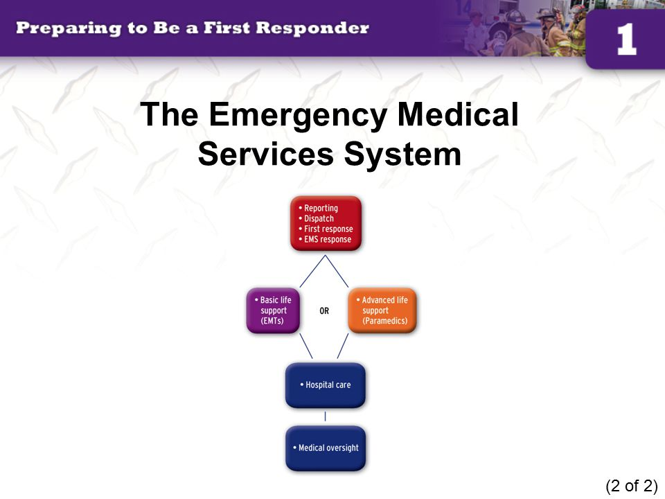 The Emergency Medical Services System