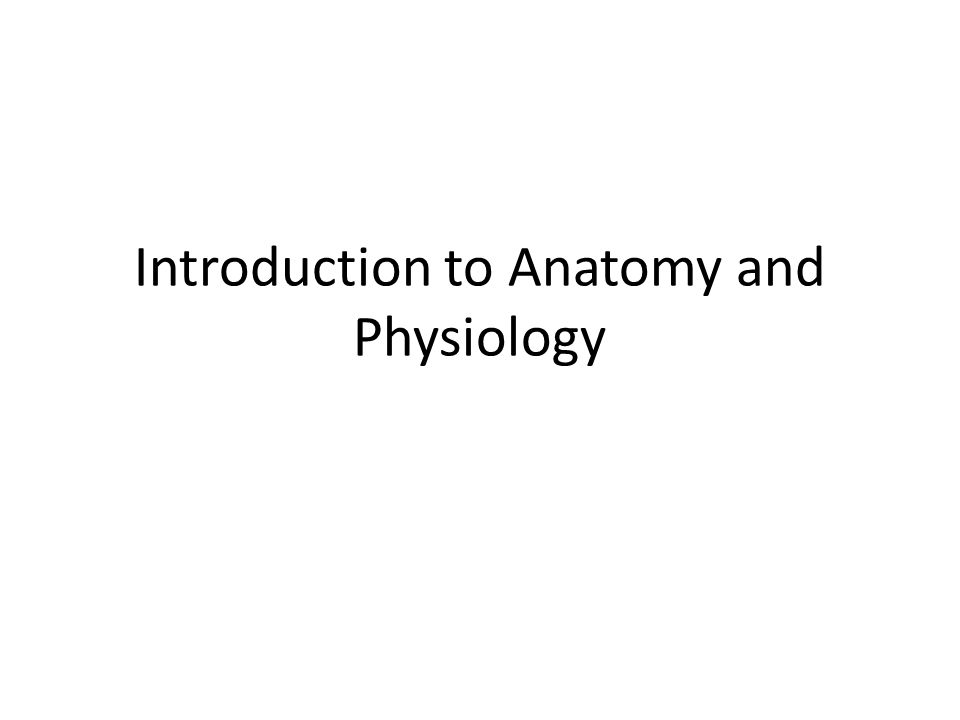 Introduction to Anatomy and Physiology - ppt download