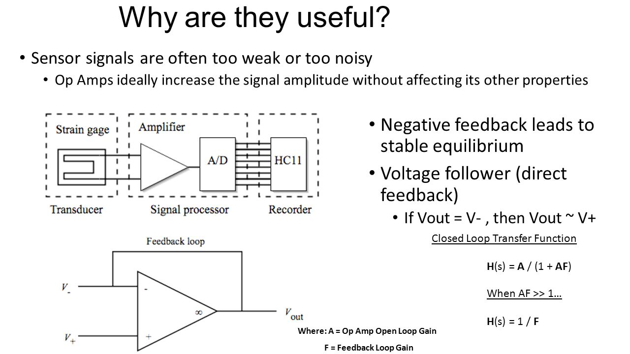 Why are they useful Negative feedback leads to stable equilibrium