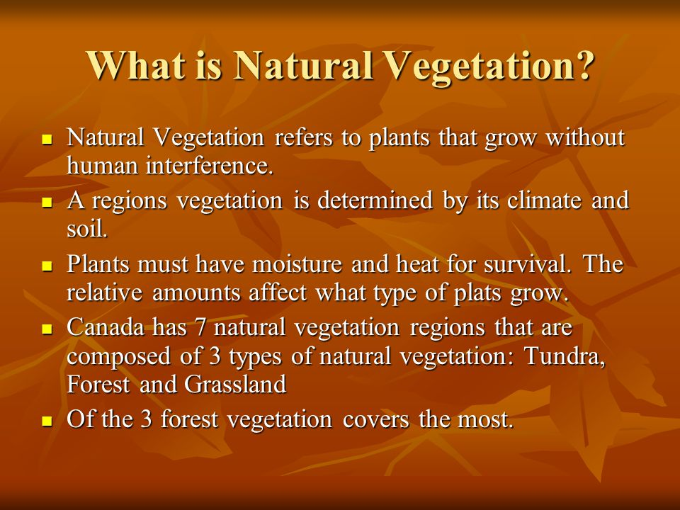 what are the different types of natural vegetation