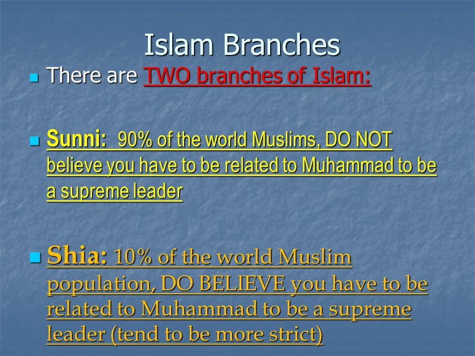 Islam Branches There are TWO branches of Islam: