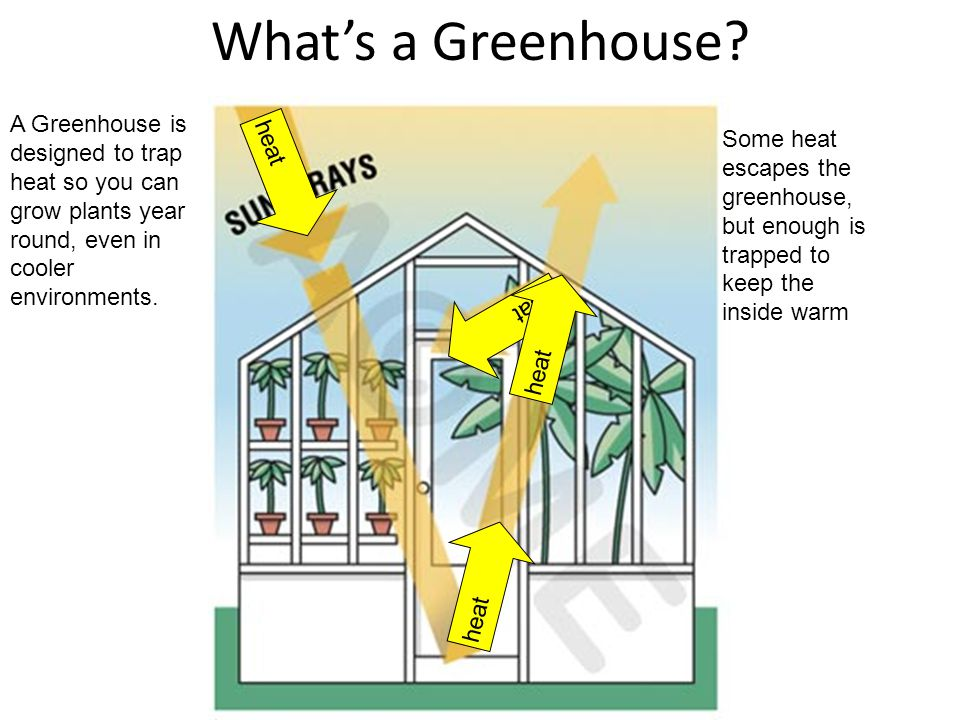 What's a Greenhouse A Greenhouse is designed to trap heat so you can grow plants year round, even in cooler environments.