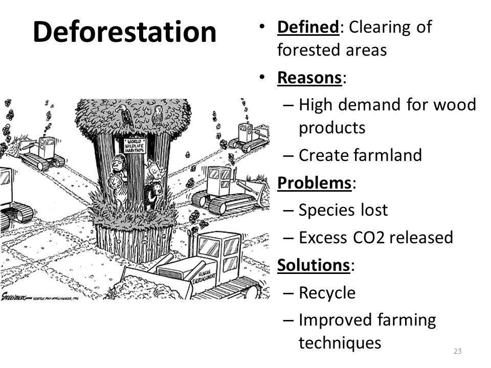Deforestation Defined: Clearing of forested areas Reasons: