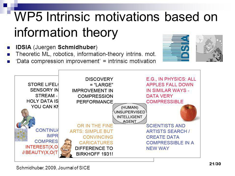 WP5 Intrinsic motivations based on information theory
