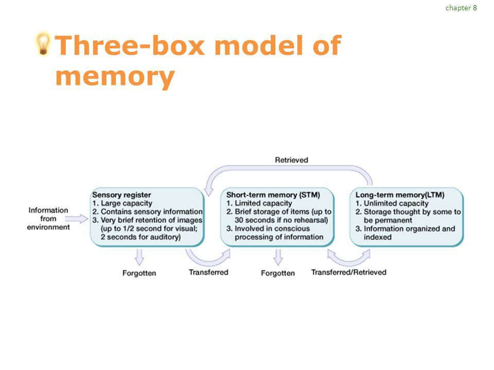 what is the capacity of the long term memory system
