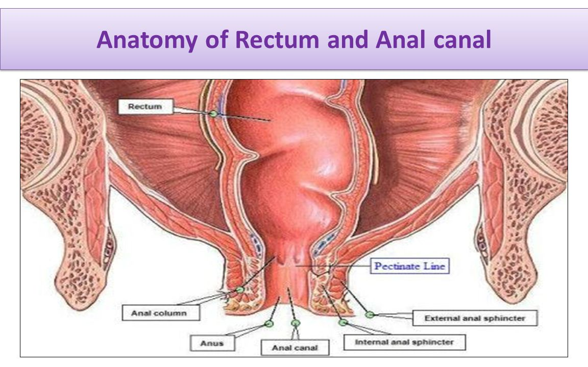 Management of Benign Ano-rectal disorders: ACG Clinical Guideline ...