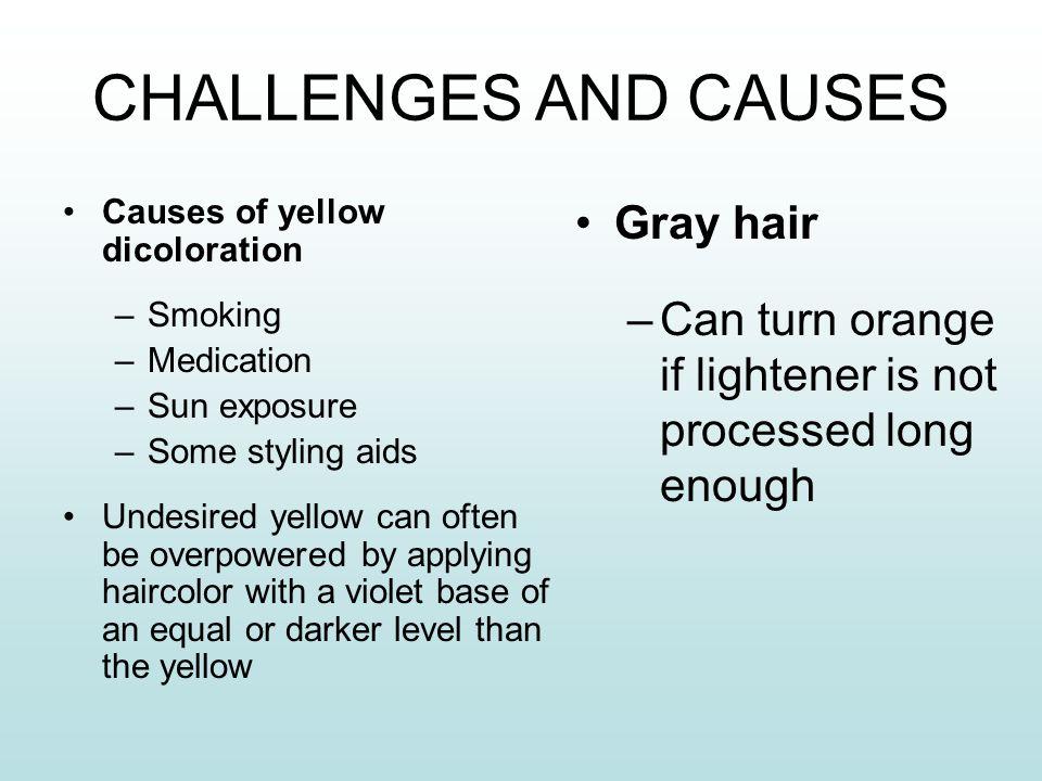Haircoloring Copyright 2013 © SAP  - ppt download