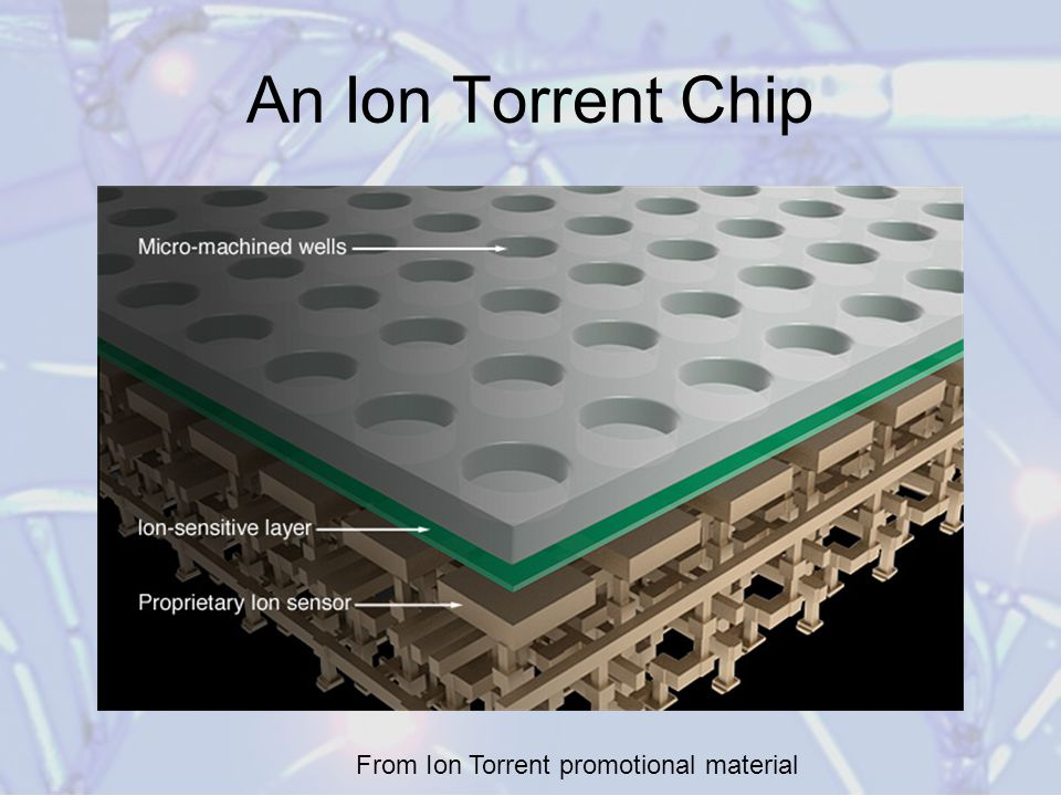 High throughput sequencing technologies ppt video online download 38 an ion torrent chip from ion torrent promotional material fandeluxe Choice Image