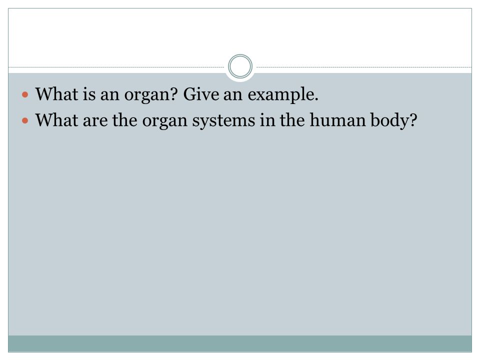 What is an organ Give an example.