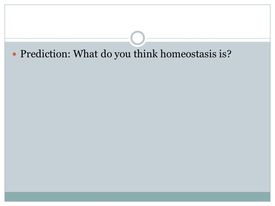 Prediction: What do you think homeostasis is