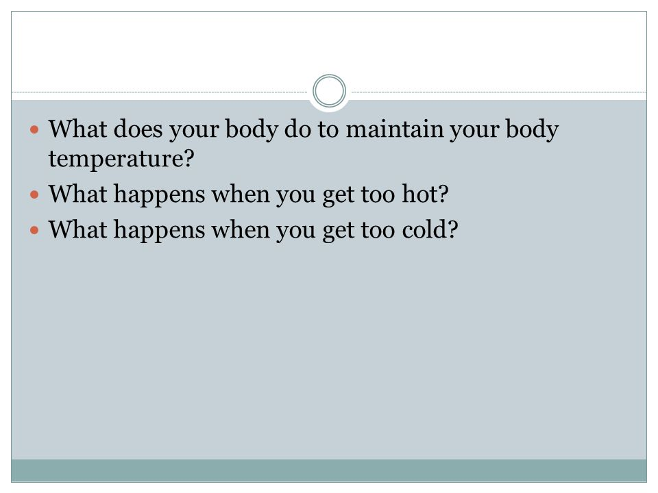 What does your body do to maintain your body temperature