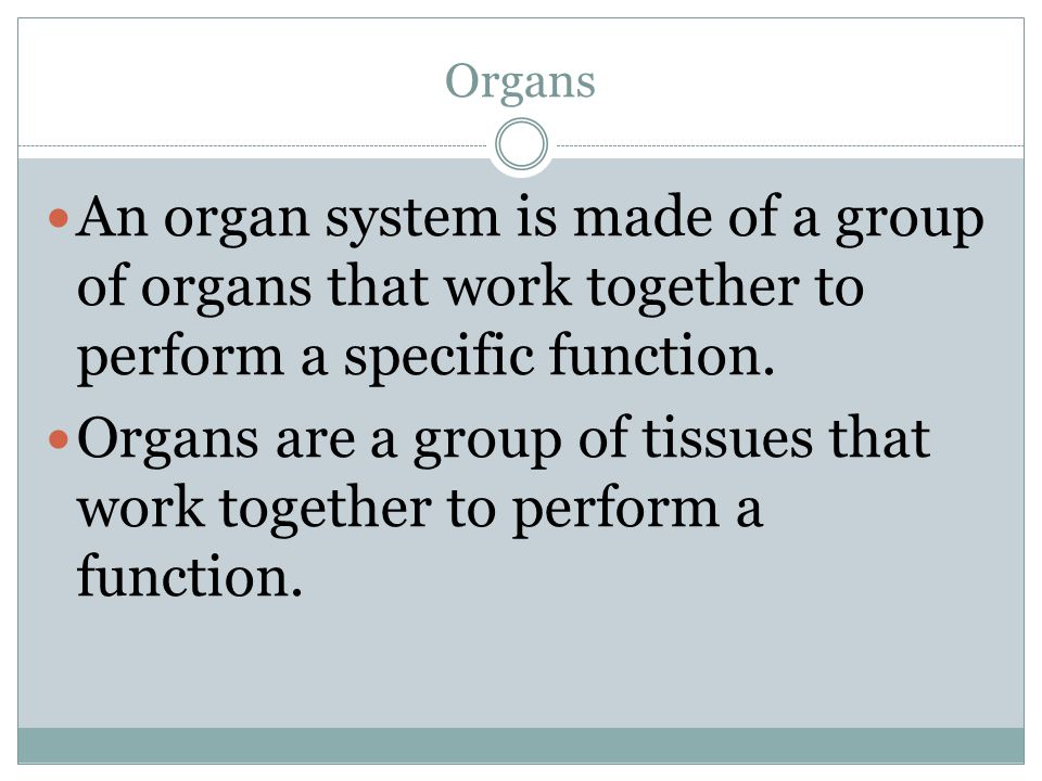 Organs An organ system is made of a group of organs that work together to perform a specific function.