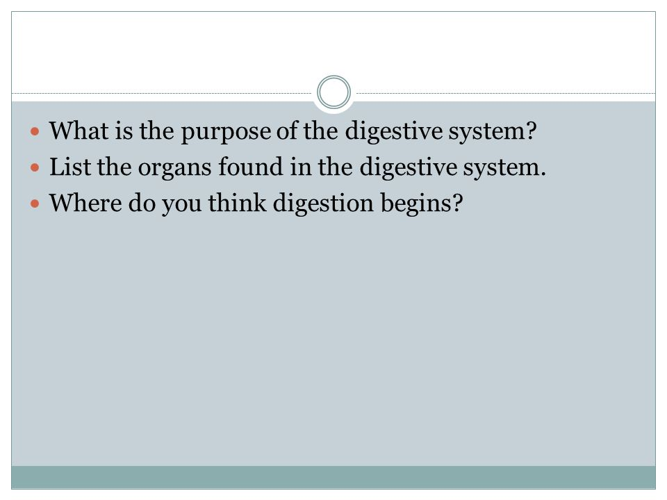 What is the purpose of the digestive system