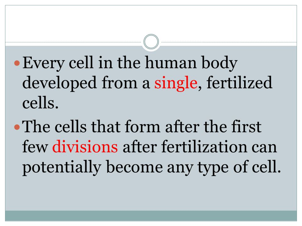 Every cell in the human body developed from a single, fertilized cells.
