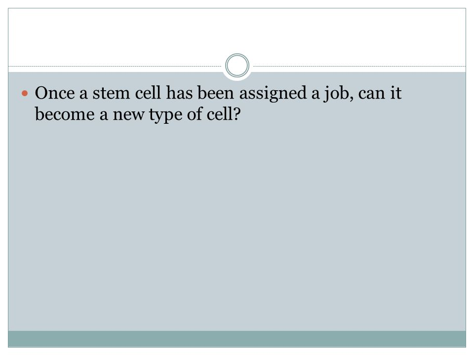 Once a stem cell has been assigned a job, can it become a new type of cell