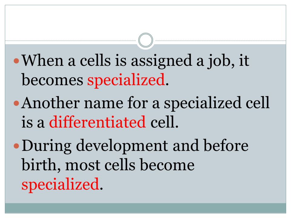 When a cells is assigned a job, it becomes specialized.