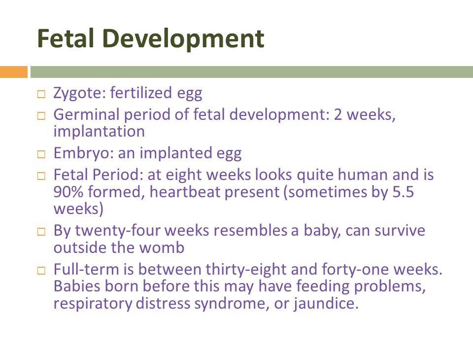human development in the social environment