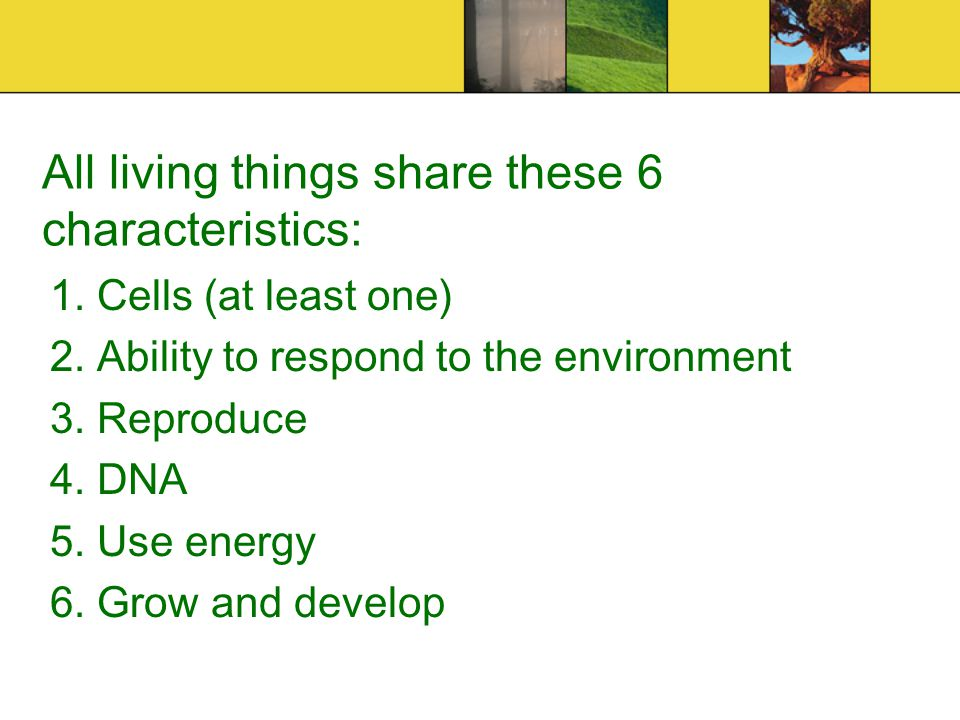 All Living Things Share These 6 Characteristics