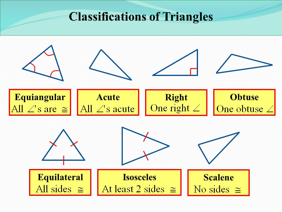 types of triangles - 919×551