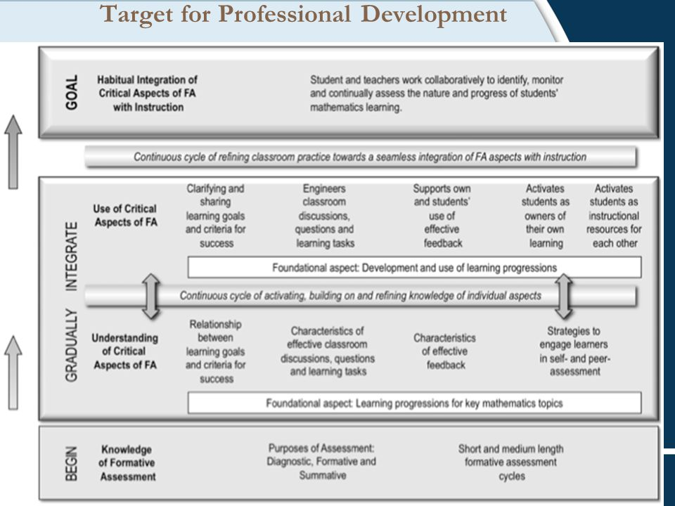 Target for Professional Development